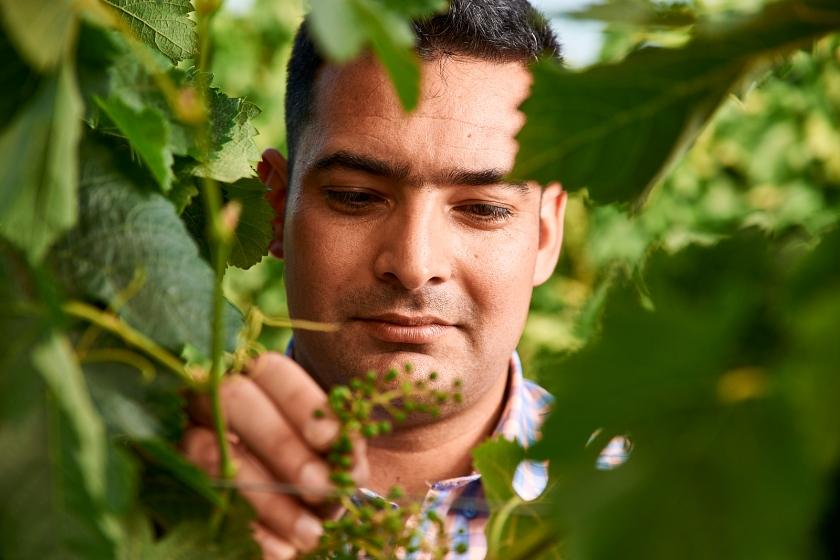 Eduardo Velasquez, Gerente Agrícola